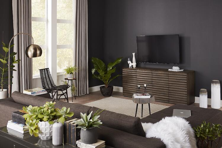 dark TV accent wall